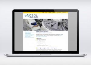 disseny web csol